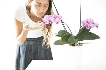 profumo di orchidee