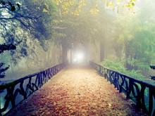 A luz do outro lado da ponte