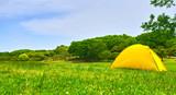 春の草原とテント