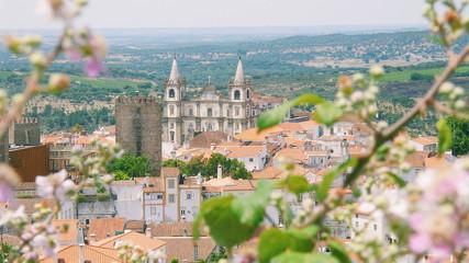 Landscape of Portalegre, alentejo region, Portugal