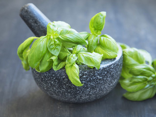 Basil Aromatic Herb in a Mortar with Pistil