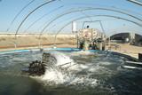 Aquaculture fish farm poster