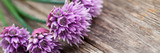 Fototapety Blooming Chives On Wood