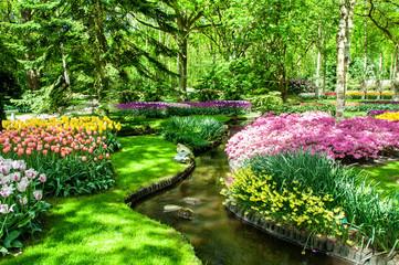 Colorful spring flowers in Holland garden Keukenhof, Netherlands