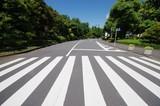 横断歩道と道