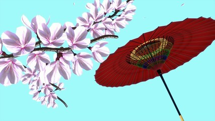 桜枝舞う和傘