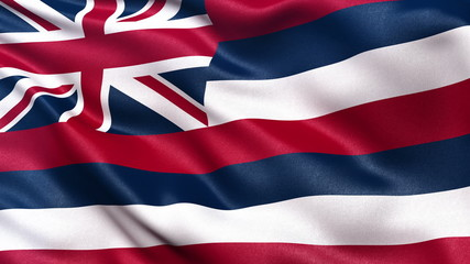US state flagof Hawaii waving in the wind - seamless loop