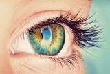 eye - 83775596