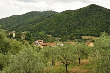 Italian countryside between Firenze and Bologna.