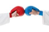 Karate sports glove and fist