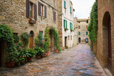Ancient Alley in Tuscany - 83848910