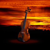 Fotoroleta Violin on a sunset (Summer music concept)