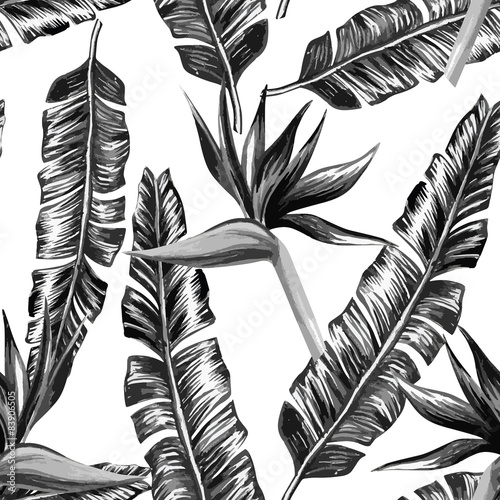 Tropical floral black and white seamless background - 83906505