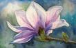 Magnolia blossom on branch.Watercolors.