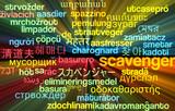 Scavenger multilanguage wordcloud background concept glowing poster