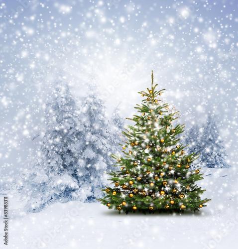 gamesageddon gl nzender christbaum im winterwald lizenzfreie fotos vektoren und videos. Black Bedroom Furniture Sets. Home Design Ideas
