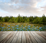 Wooden deck with forest trees and flowers