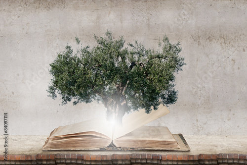 Reading develops imagination - 84097114