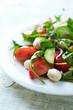 Colorful Summer Salad with Mozzarella