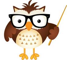 Teacher Owl Sticker