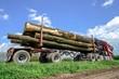 ������, ������: Holztransport Laster transportiert lange Baumst