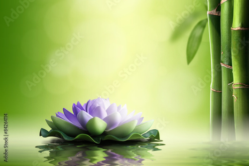 Zen concept. Purple lotus in bamboo forest.