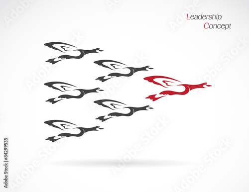 Naklejka Flock of wild ducks flying, Leadership concept
