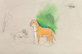 children unfinished drawing - tigress with cubs poster