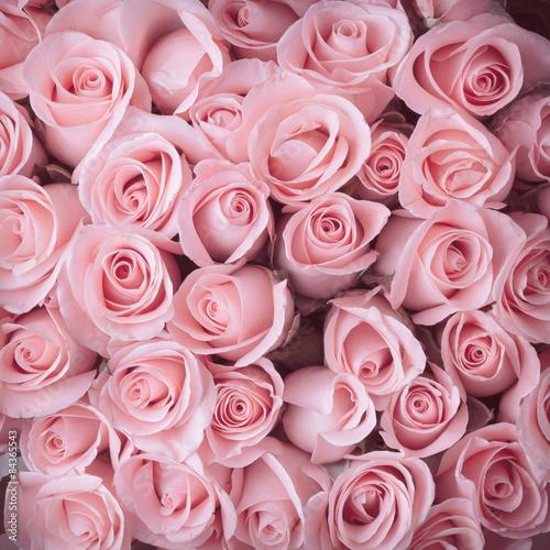 Fototapeta pink rose flower bouquet vintage background