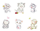 Set of cute kittens - 84416563
