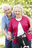 Fototapety Senior couple with bike