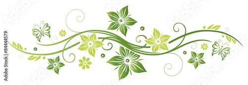 Naklejka Frühlings- und Sommerblumen