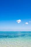 Naklejka 沖縄の海