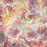 Fototapety Spring Cherry Blossom Background