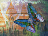butterfly( Thai background )