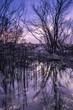Quadro evening landscape
