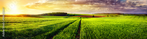 Fotobehang Lime groen Rural landscape sunset panorama
