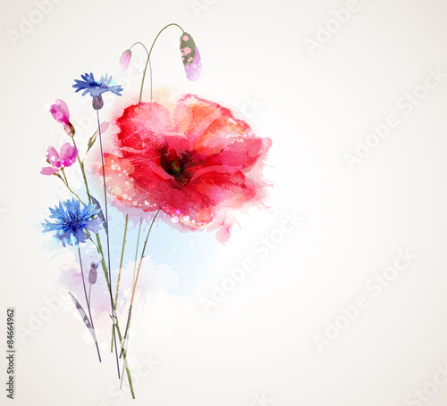 Fototapeta Floral bouquet with poppy and cornflowers