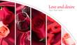 Obrazy na płótnie, fototapety, zdjęcia, fotoobrazy drukowane : Flowers and wine