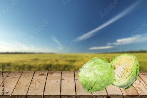 Poster Cabbage, Vegetable, Isolated.