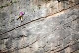 Vertical rock climbing