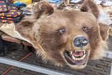 Bear pelt on street market - Schokland, Holland. poster