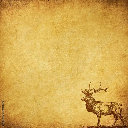great deer - backround