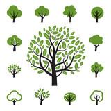 Fototapety Set of vector tree