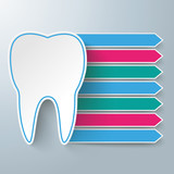 Tooth 7 Paper Banners