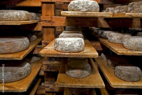 Naklejka cheese