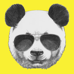 Hand drawn portrait of Panda with sunglasses. Vector isolated elements.