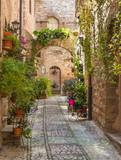 Vicolo con fiori, Spello - 84967904