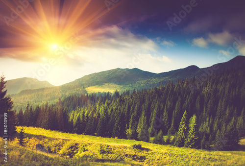 fototapeta na ścianę Beautiful summer mountain landscape at sunshine.