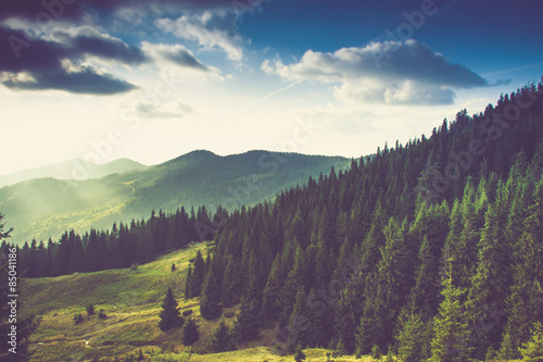 Tuinposter Aubergine Beautiful summer mountain landscape.